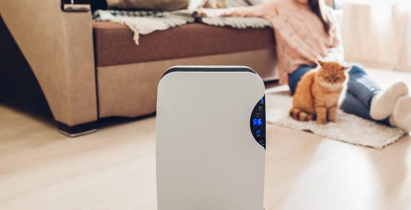 Nawilżacz powietrza – kto potrzebuje?