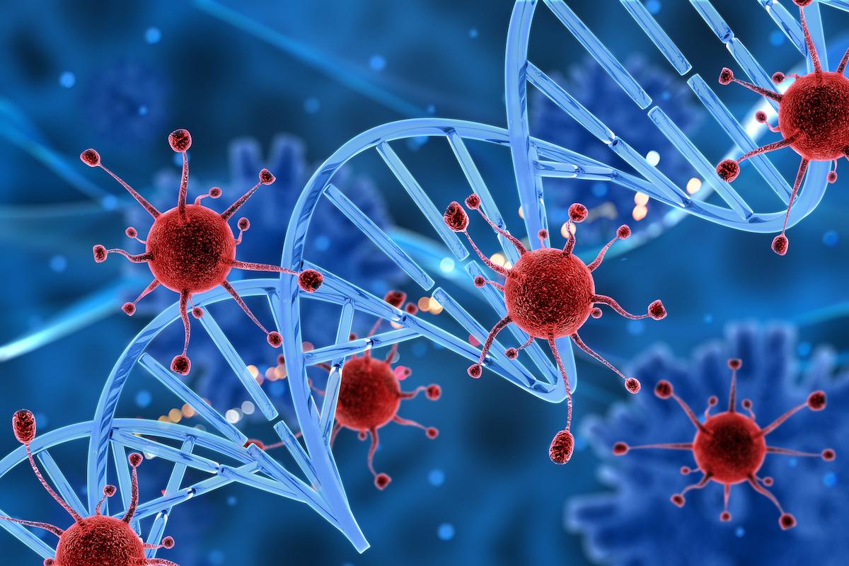 wirus ebv epstein-barr